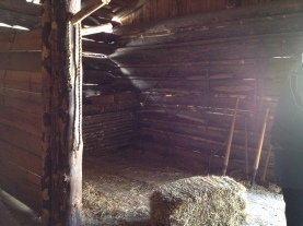 Horse stall.
