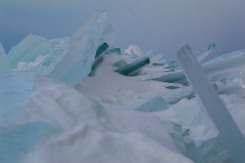 Some of the obstacles we faced on the way to the ice caves (this is a close up).